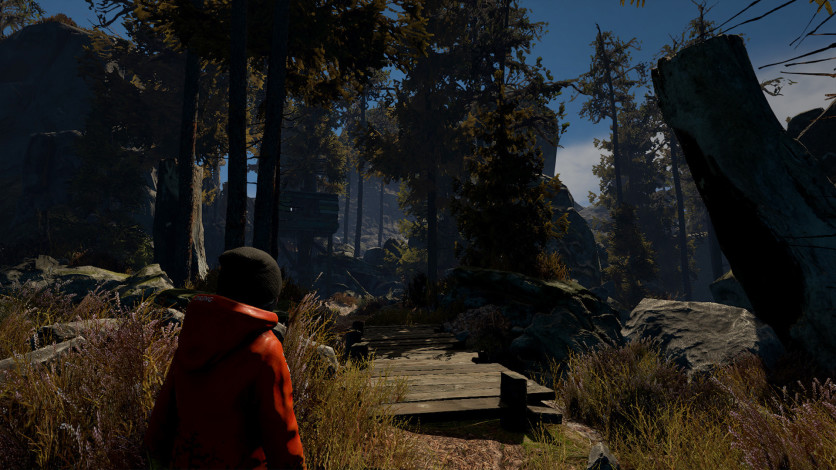 Screenshot 3 - Through the Woods