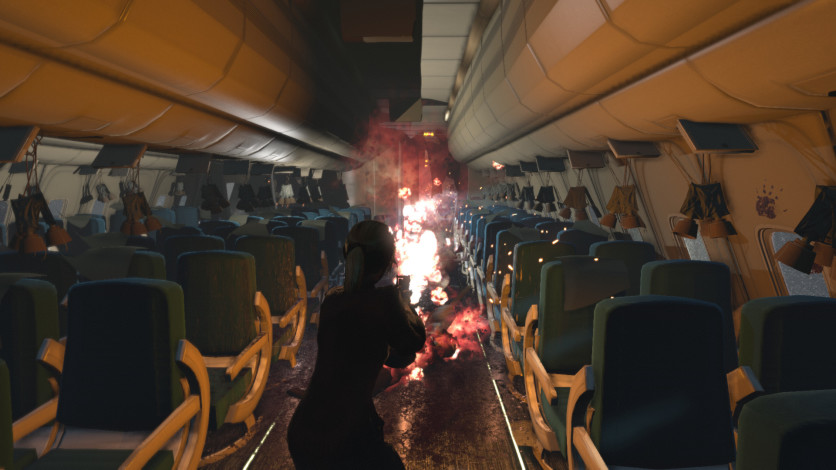 Screenshot 13 - Zombies on A Plane