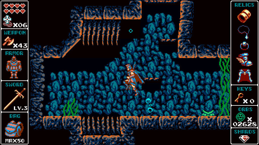 Screenshot 13 - Odallus: The Dark Call