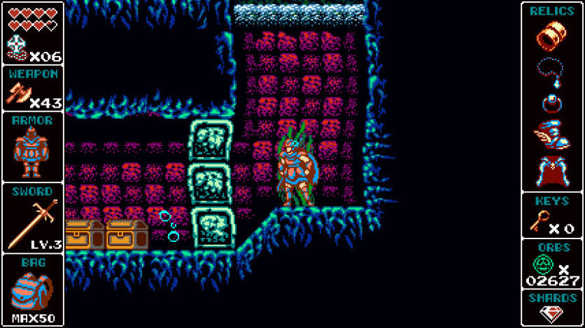 Screenshot 16 - Odallus: The Dark Call