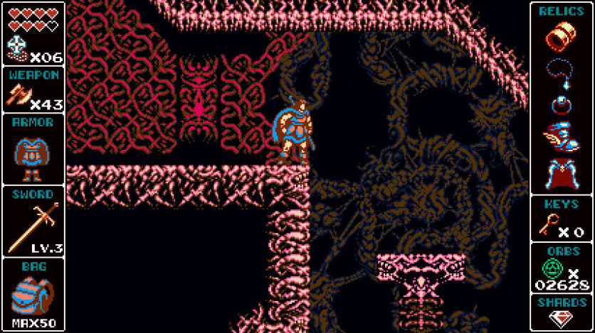 Screenshot 8 - Odallus: The Dark Call