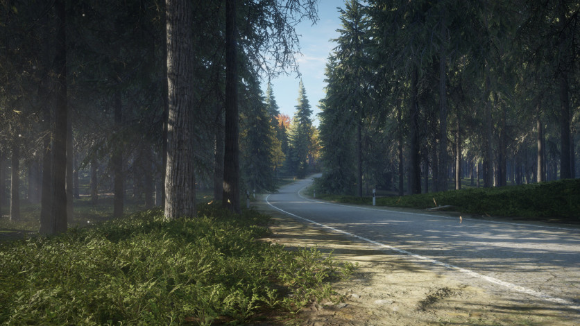 Screenshot 11 - theHunter: Call of the Wild