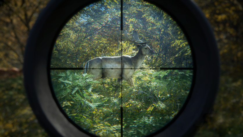 Screenshot 2 - theHunter: Call of the Wild