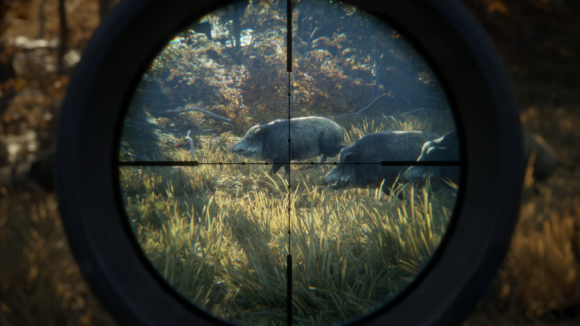 Screenshot 13 - theHunter: Call of the Wild