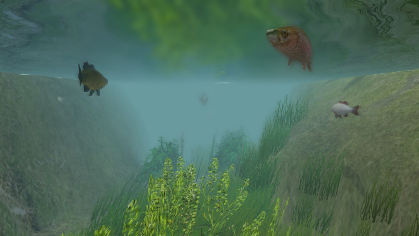 Screenshot 5 - European Fishing
