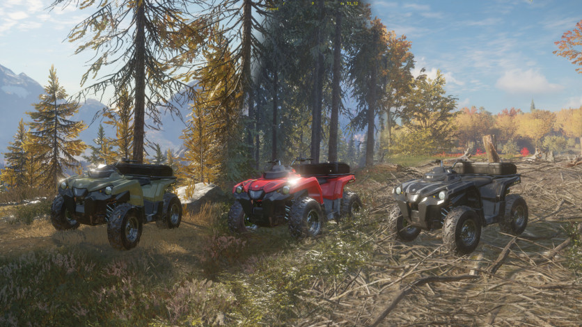 Screenshot 5 - theHunter: Call of the Wild – ATV SABER 4X4