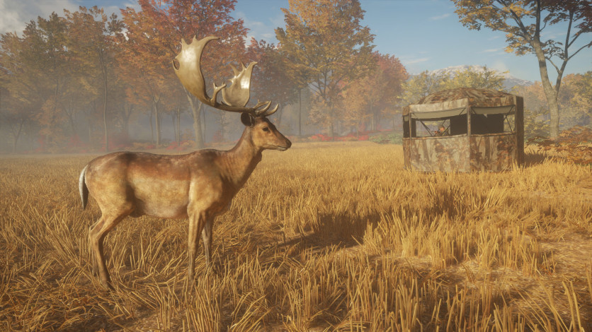 Screenshot 2 - theHunter: Call of the Wild - Tents & Ground Blinds