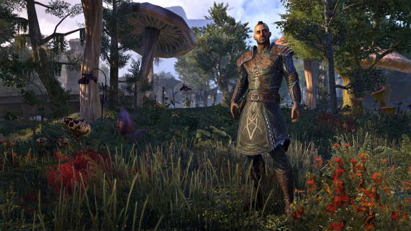 Screenshot 11 - The Elder Scrolls Online - Morrowind Digital Collector's Edition