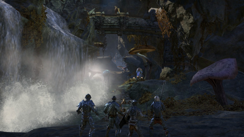 Screenshot 5 - The Elder Scrolls Online - Morrowind Digital Collector's Edition
