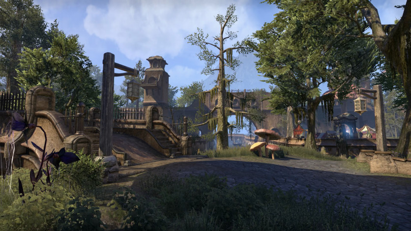 Screenshot 3 - The Elder Scrolls Online - Morrowind Digital Collector's Edition