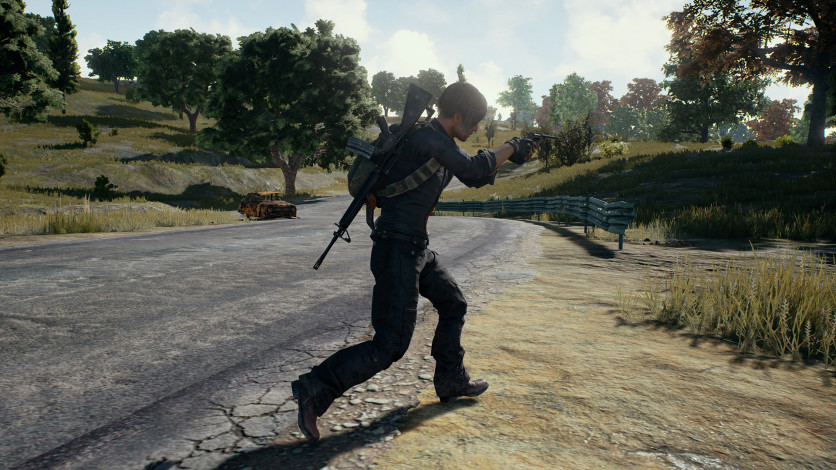 Screenshot 6 - PLAYERUNKNOWN'S BATTLEGROUNDS