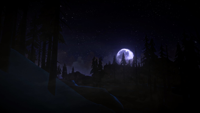 Screenshot 10 - The Long Dark