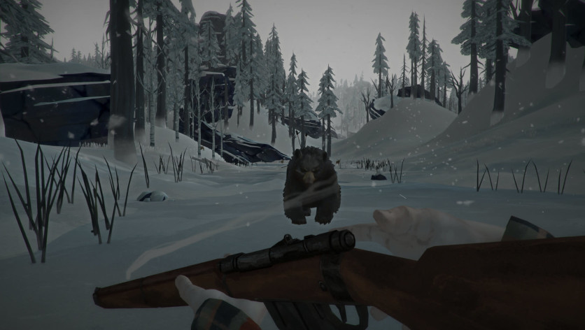 Screenshot 9 - The Long Dark