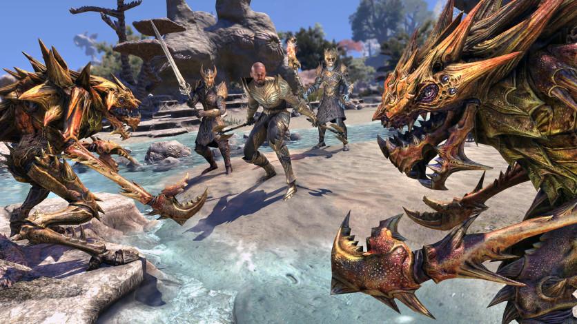 Screenshot 8 - The Elder Scrolls Online: Summerset - Digital Collector's Upgrade