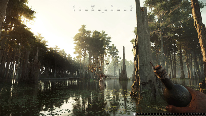 Screenshot 9 - Hunt Showdown