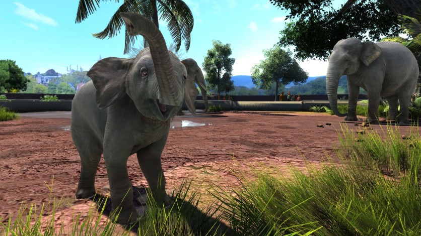 Screenshot 6 - Zoo Tycoon: Ultimate Animal Collection