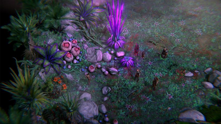 Screenshot 2 - Pathfinder: Kingmaker - Royal Edition
