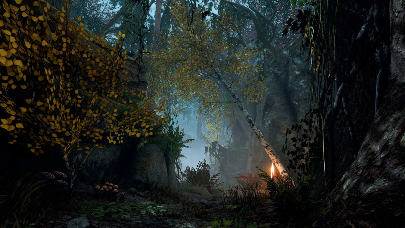 Screenshot 3 - Warhammer: Vermintide 2 - Back to Ubersreik