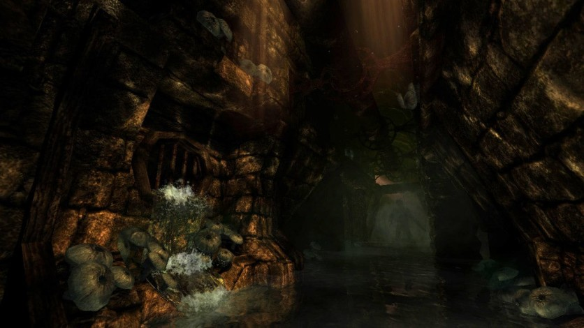 Screenshot 4 - AMNESIA COLLECTION