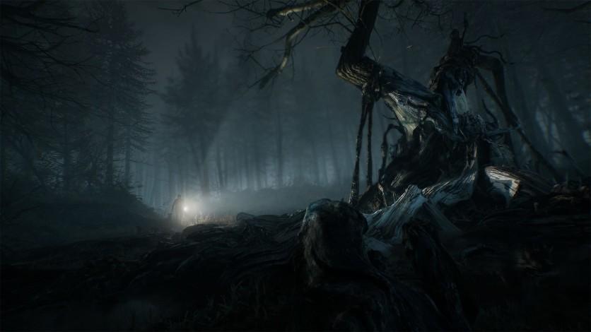 Screenshot 2 - Blair Witch