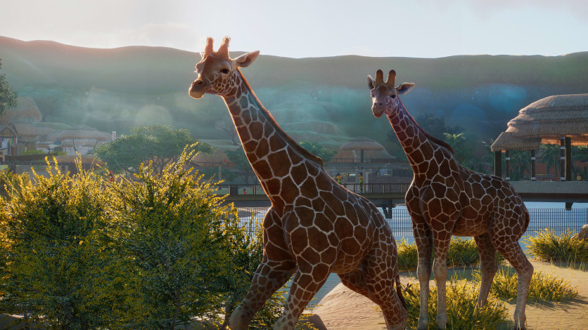 Screenshot 15 - Planet Zoo