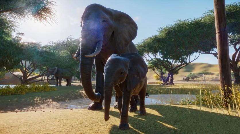 Screenshot 12 - Planet Zoo - Deluxe Edition