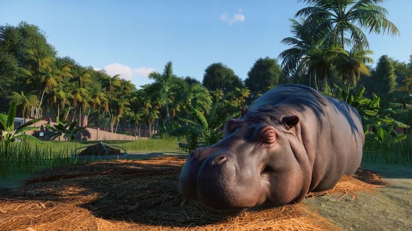 Screenshot 11 - Planet Zoo - Deluxe Edition