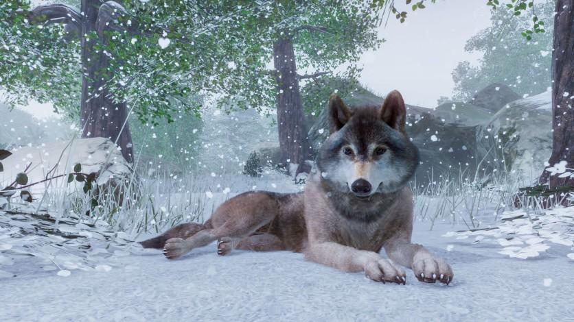 Screenshot 5 - Planet Zoo - Deluxe Edition