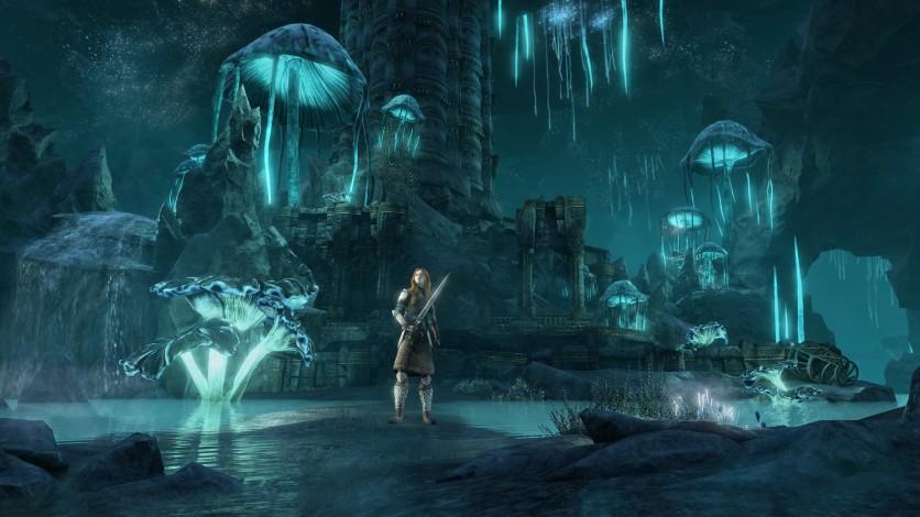 Screenshot 2 - The Elder Scrolls Online - Greymoor Digital Collector's Edition