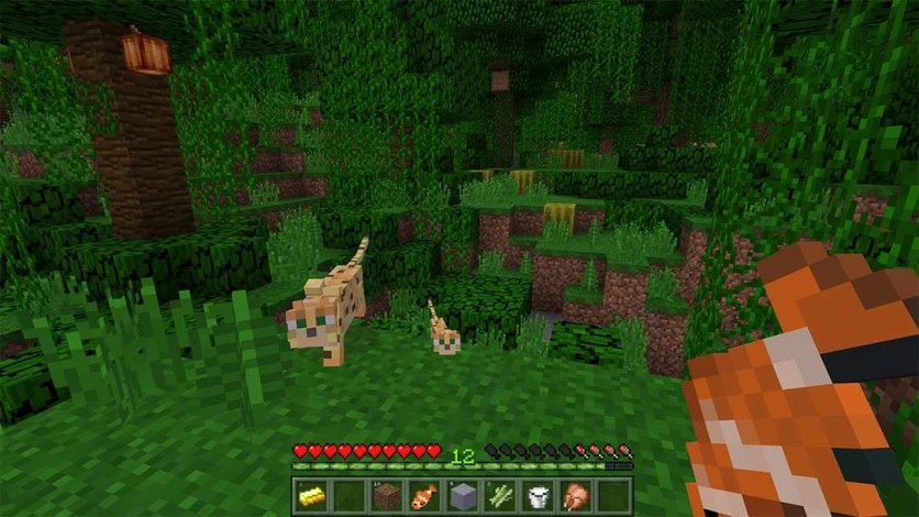 Screenshot 3 - Minecraft - Gift Card Digital