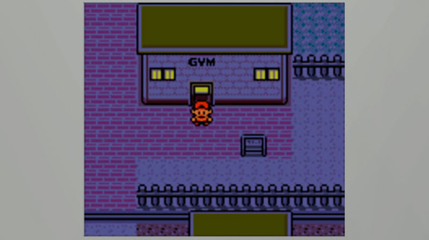 Screenshot 9 - Pokémon Silver Version