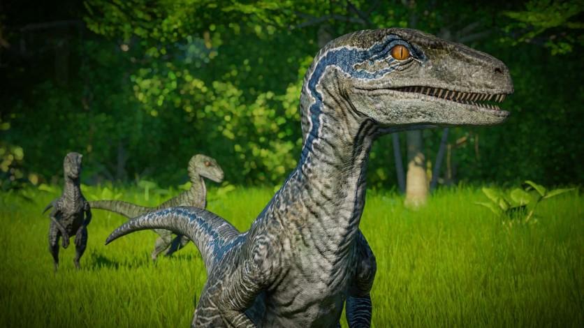 Screenshot 2 - Jurassic World Evolution: Raptor Squad Skin Collection