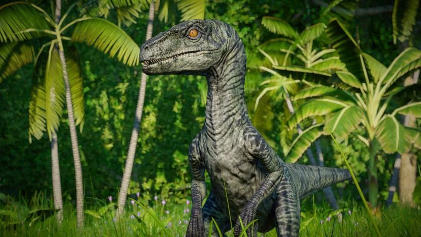 Screenshot 5 - Jurassic World Evolution: Raptor Squad Skin Collection