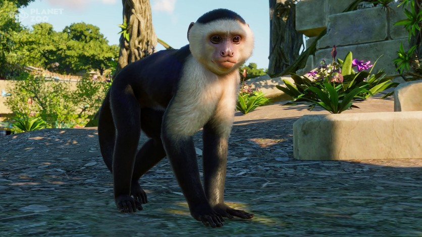 Screenshot 7 - Planet Zoo: South America Pack