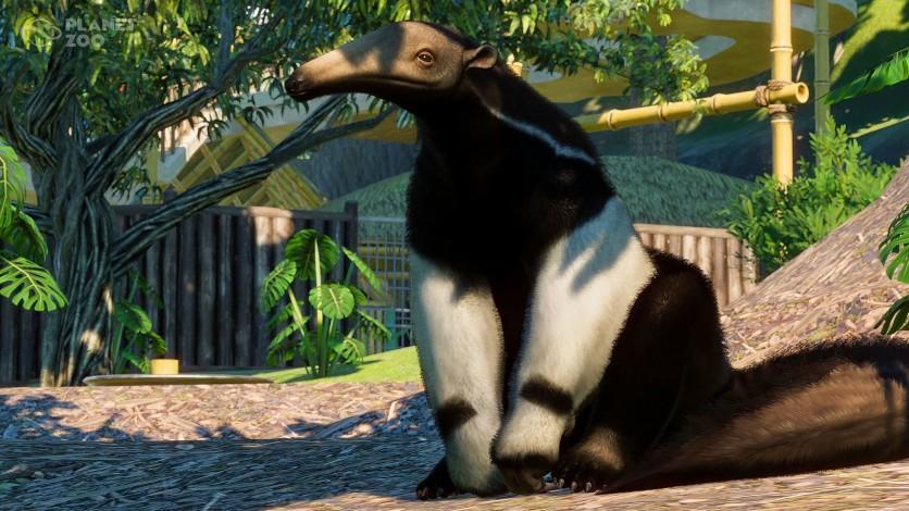 Screenshot 8 - Planet Zoo: South America Pack