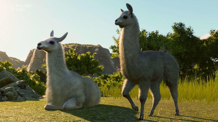 Screenshot 4 - Planet Zoo: South America Pack