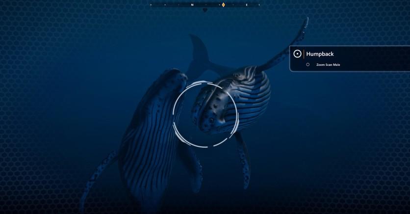 Screenshot 4 - Beyond Blue