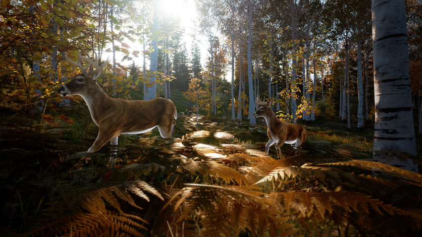 Screenshot 5 - Hunting Simulator 2