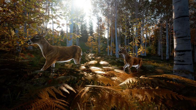 Screenshot 5 - Hunting Simulator 2 - Bear Hunter Edition