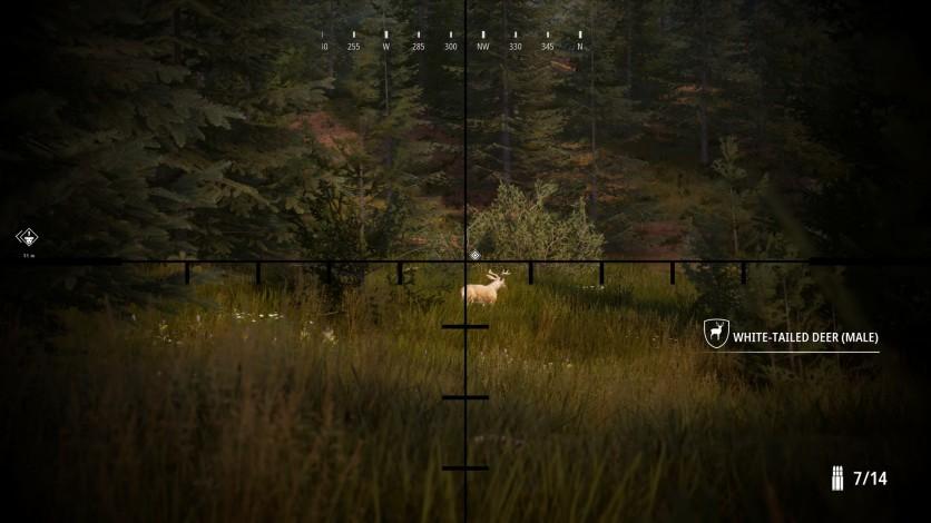Screenshot 7 - Hunting Simulator 2 - Bear Hunter Edition