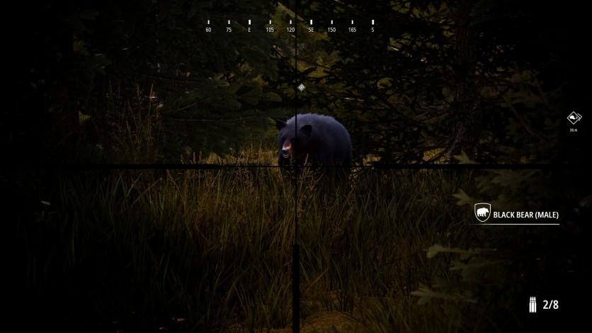 Screenshot 5 - Hunting Simulator 2 - Bear Hunter Pack