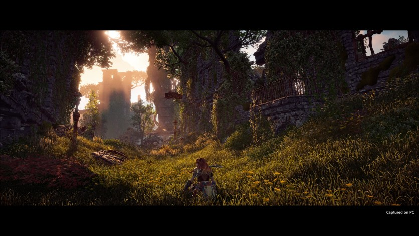 Screenshot 6 - Horizon Zero Dawn Complete Edition