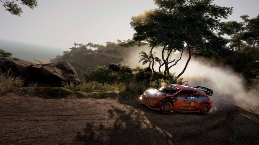 Screenshot 6 - WRC 9 Deluxe Edition