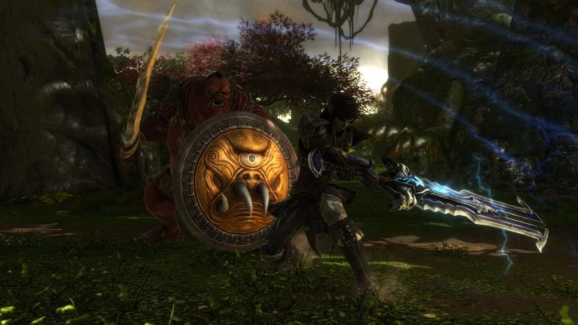 Screenshot 8 - Kingdoms of Amalur: Re-Reckoning