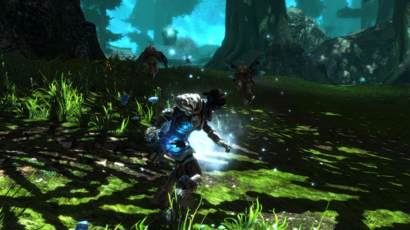 Screenshot 9 - Kingdoms of Amalur: Re-Reckoning FATE Edition