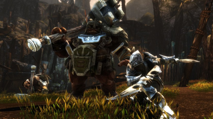 Screenshot 2 - Kingdoms of Amalur: Re-Reckoning FATE Edition