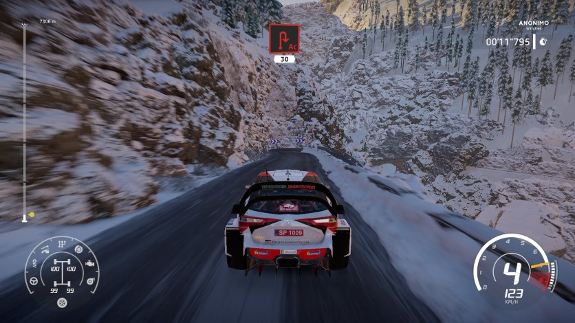 Screenshot 11 - WRC 8 FIA World Rally Championship - Deluxe Edition