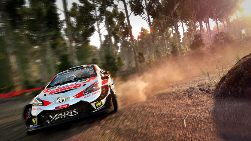 Screenshot 7 - WRC 8 FIA World Rally Championship - Deluxe Edition