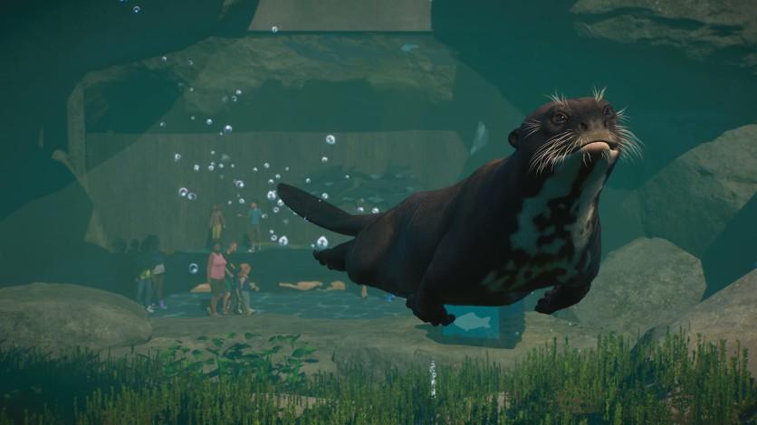 Screenshot 6 - Planet Zoo: Aquatic Pack