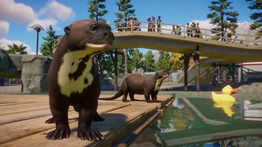 Screenshot 7 - Planet Zoo: Aquatic Pack